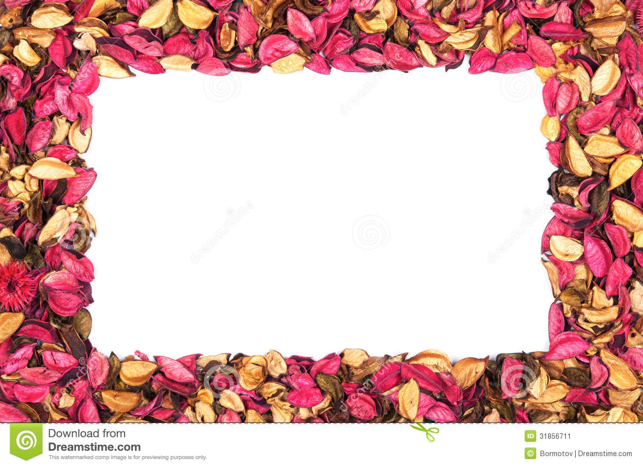 Frame Of Red Flower Petals On White Stock Image - Image of beautiful ...