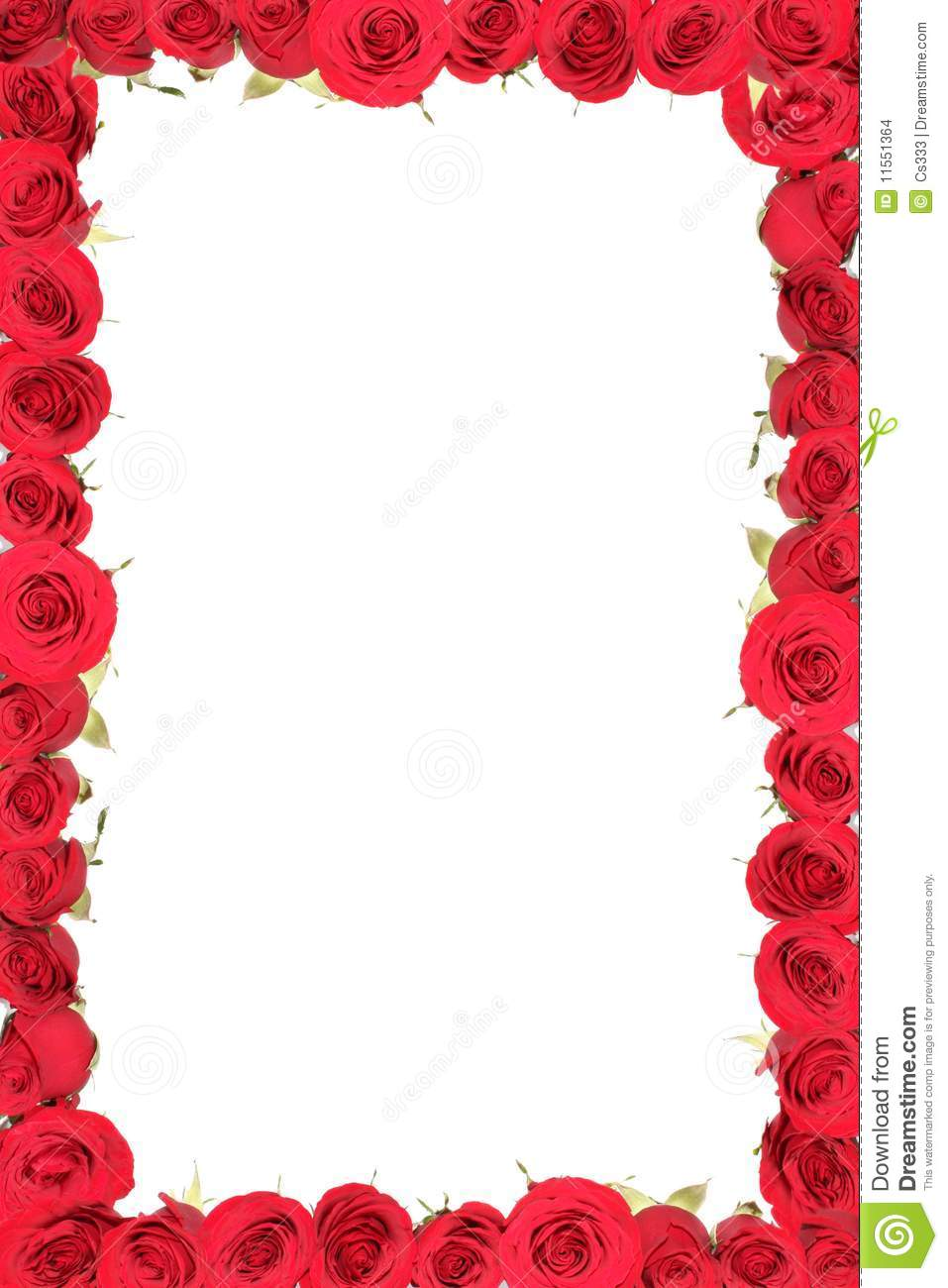 Frame from red roses. stock photo. Image of isolated - 11551364