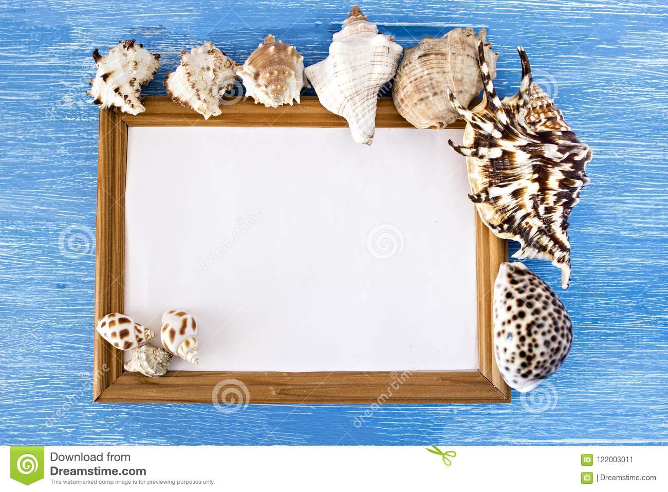 Frame and seashells on a blue wooden background