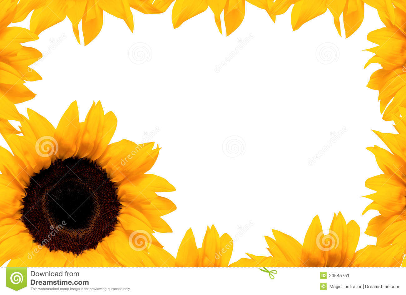 Illustration of sunflower frame isolated on white background.