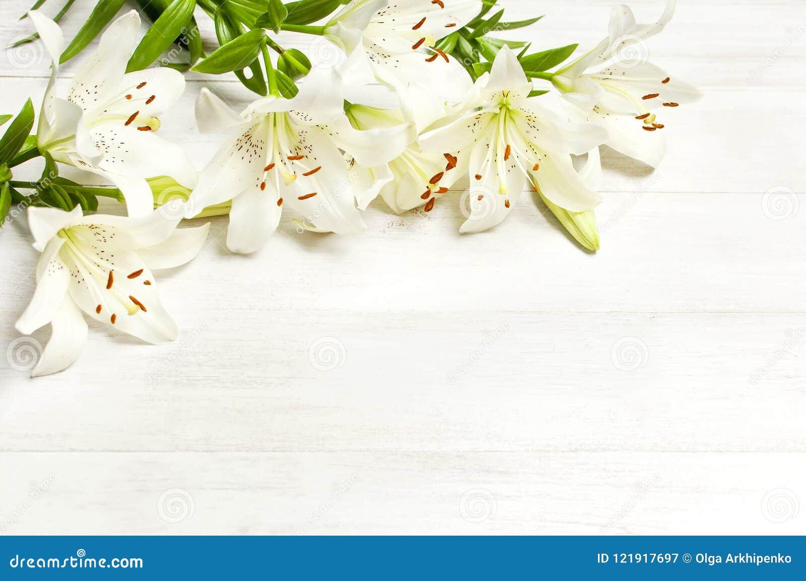 Frame of white lilies on a white wooden background top view flowers frame of white lilies on a white wooden background top view flowers lily beautiful bouquet izmirmasajfo