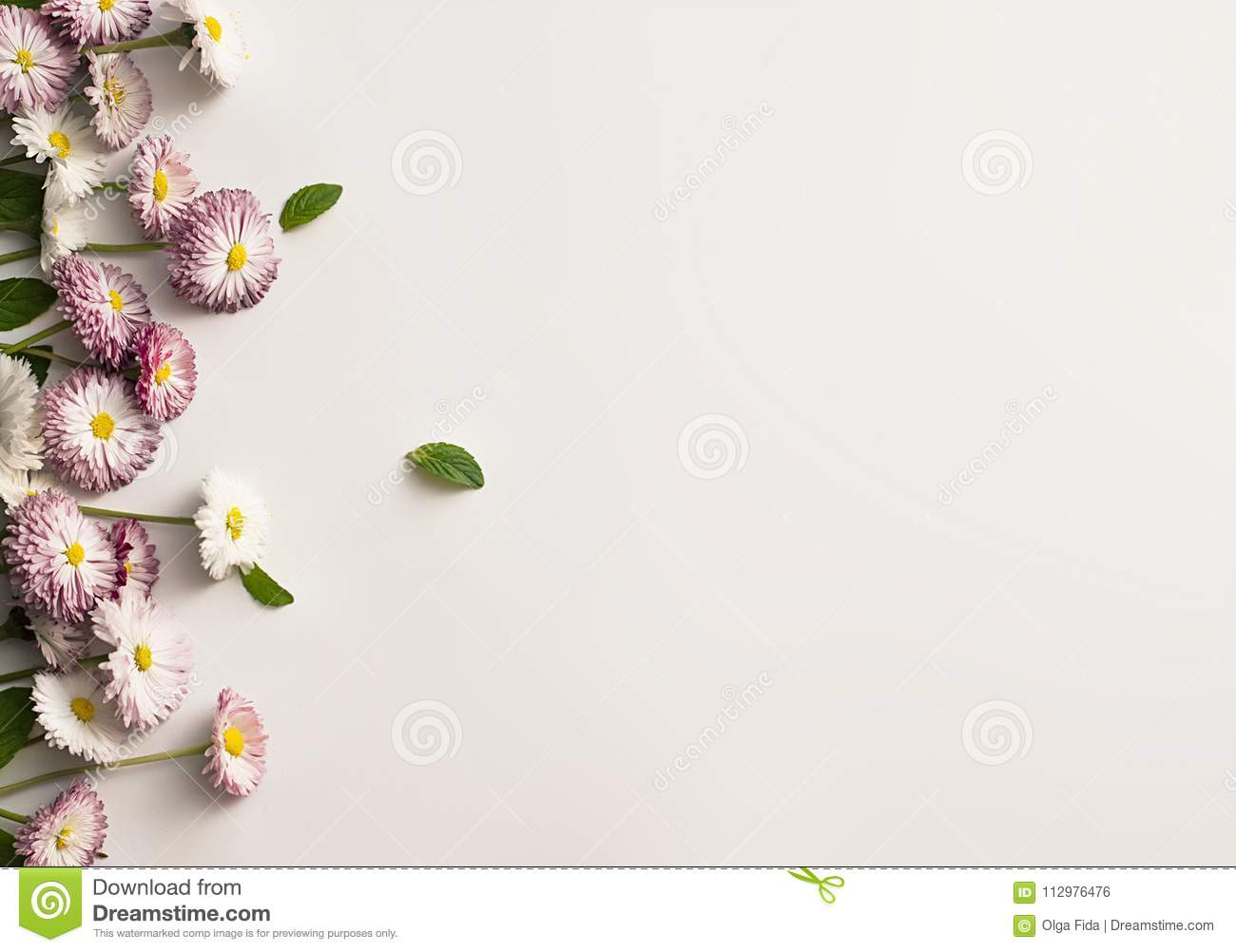 Frame of white and pink daisies