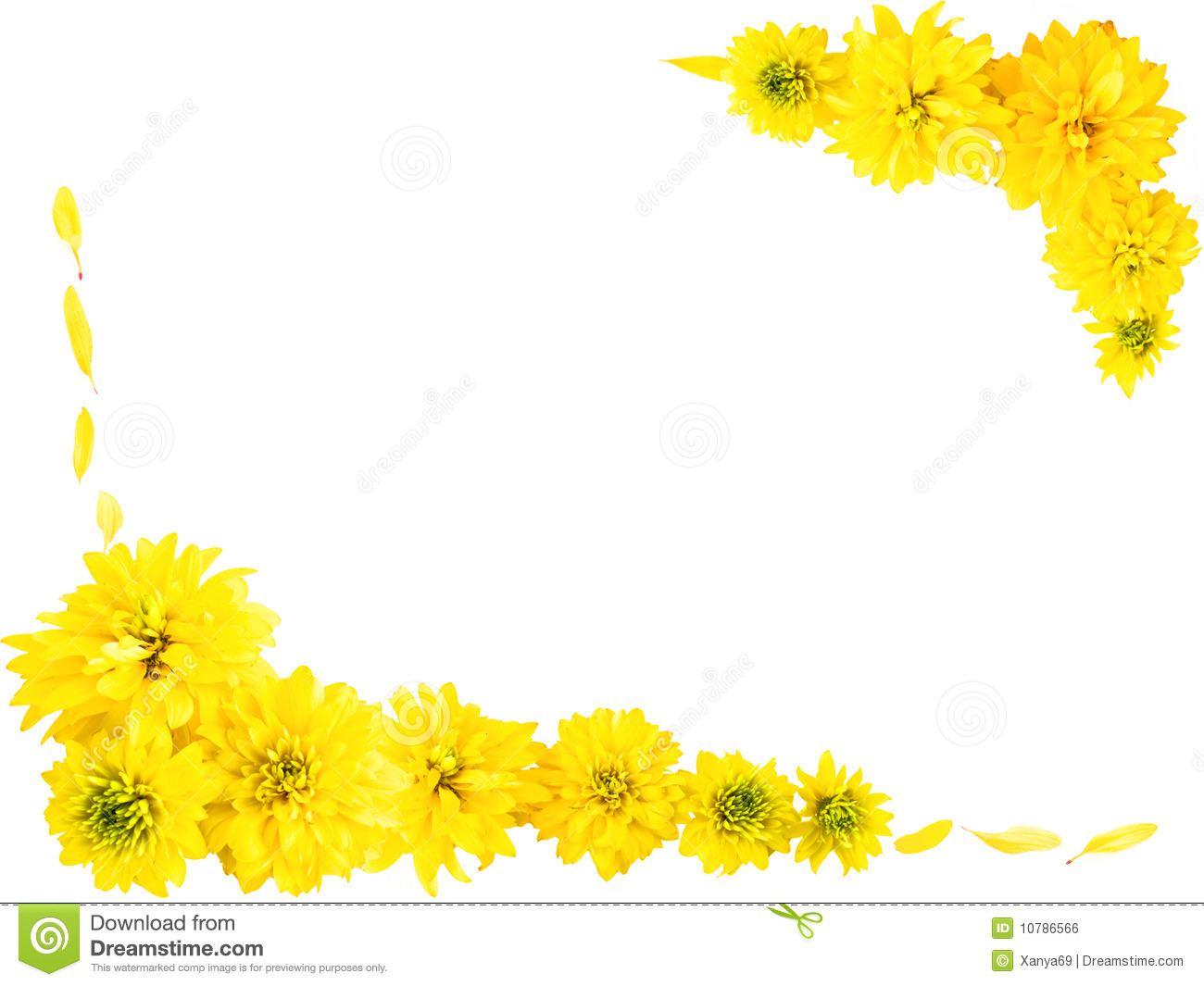 Yellow Flowers Frame Stock Vector - Image: 40014374