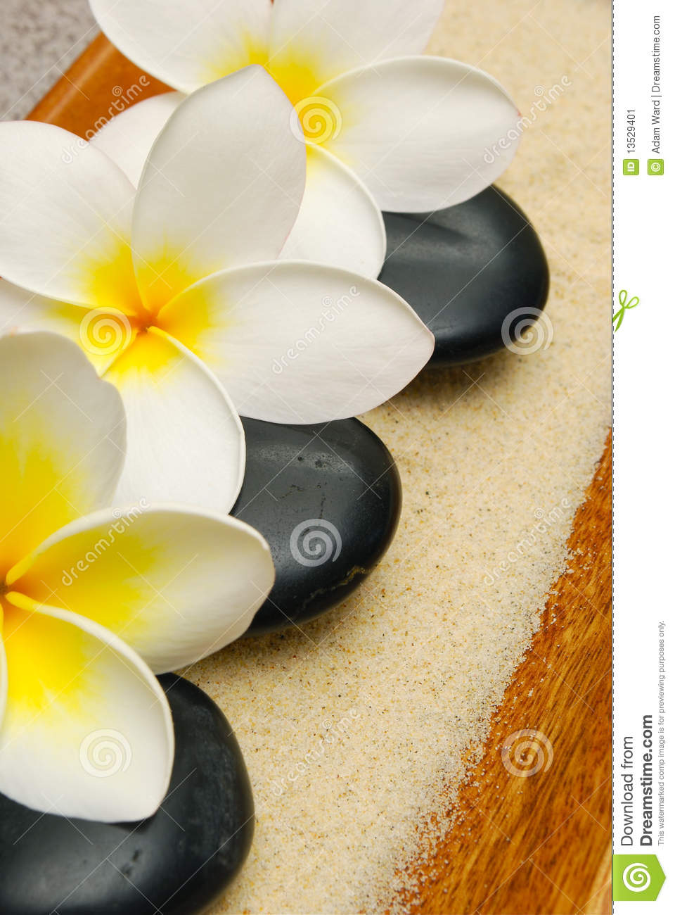 More similar stock images of ` Frangipani flowers and massage stones `