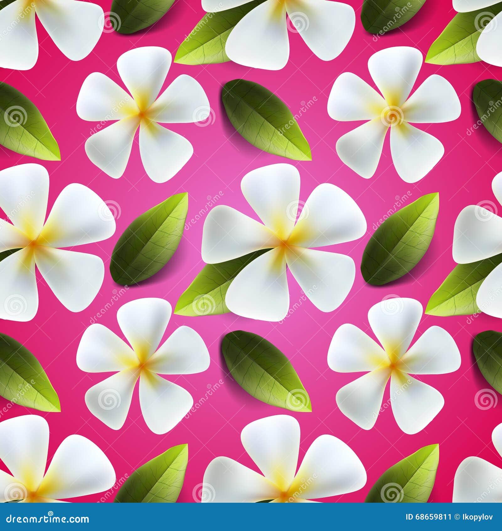Frangipani Flowers Seamless Pattern Stock Illustration