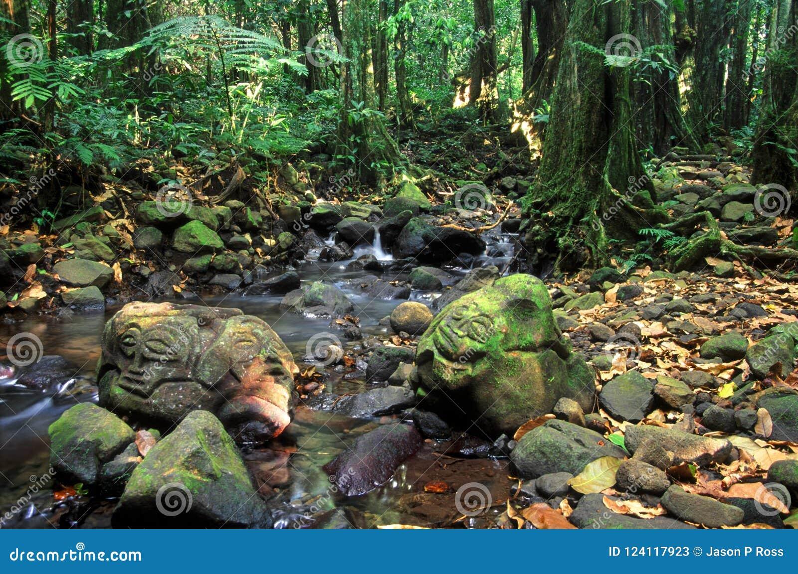 Französisch-Polynesien-Regenwald-Felsritzungen
