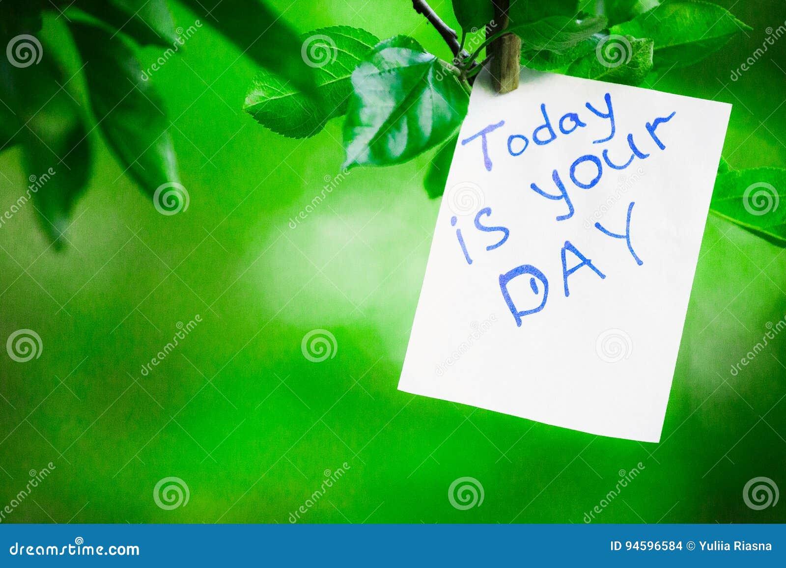 A Frase Da Motivação é Hoje Seu Dia Em Um Fundo Verde Em Um Ramo é