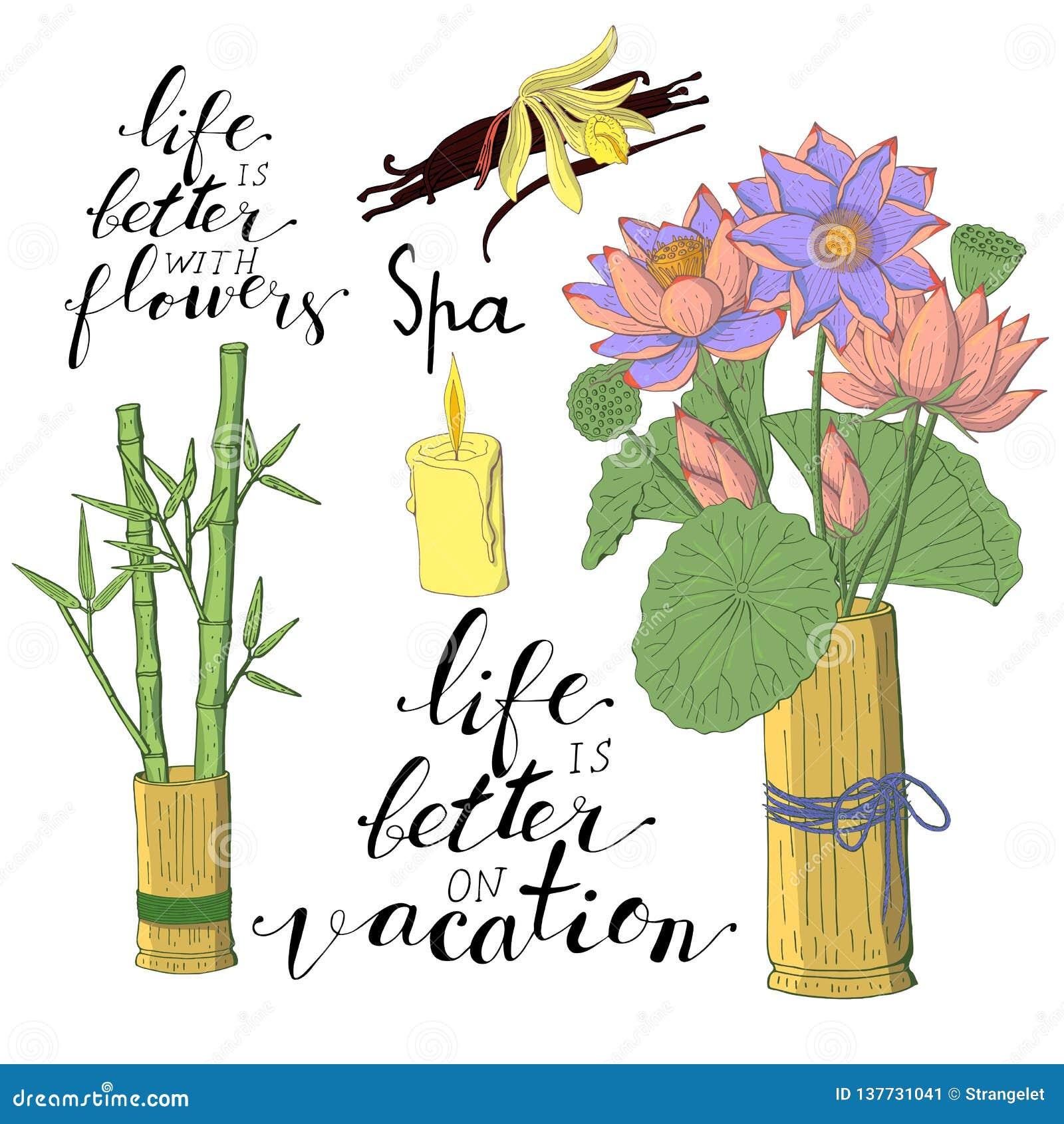 Frases Y Flores De Las Letras De La Mano Aisladas En El