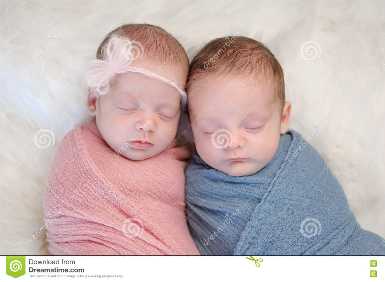 Fraternal Twin Baby Brother And Sister Stock Photo - Image ...