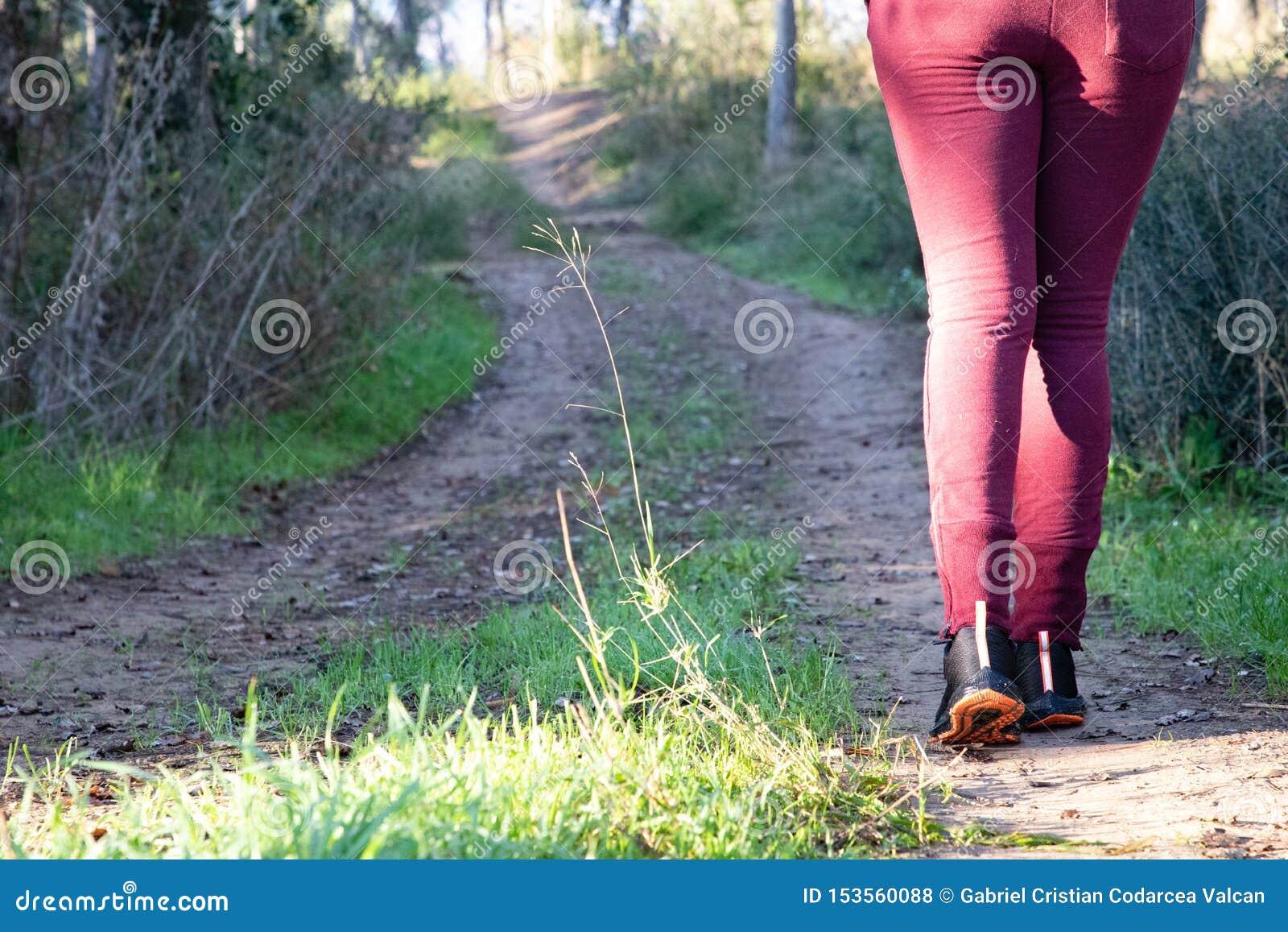 Frau, die auf Bahn nicht für den Straßenverkehr im Wald geht
