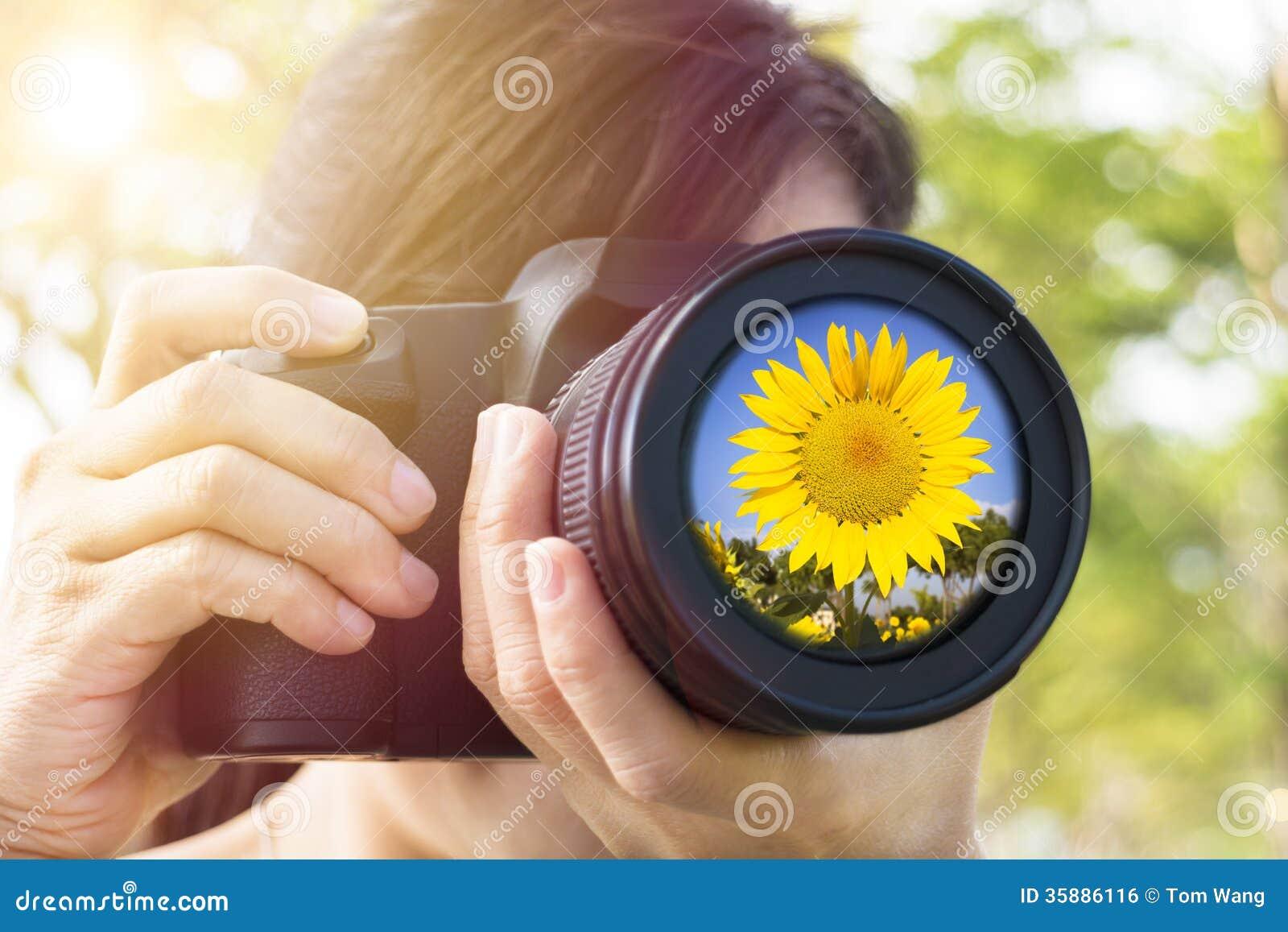 Frau, die Foto mit Sonnenblume macht