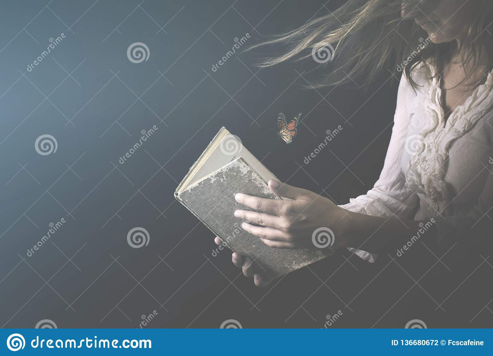 Frau liest ein Buch, wohin Schmetterlinge erlöschen