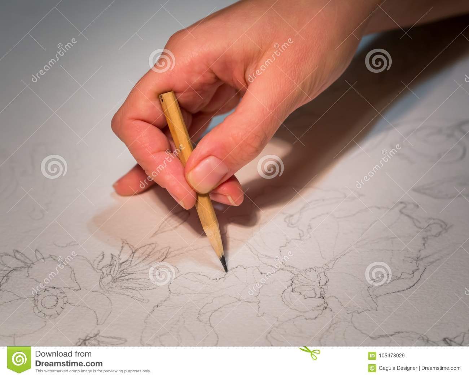 Frau S Hand Die Einen Bleistift Und Ein Zeichnen Blumen Auf