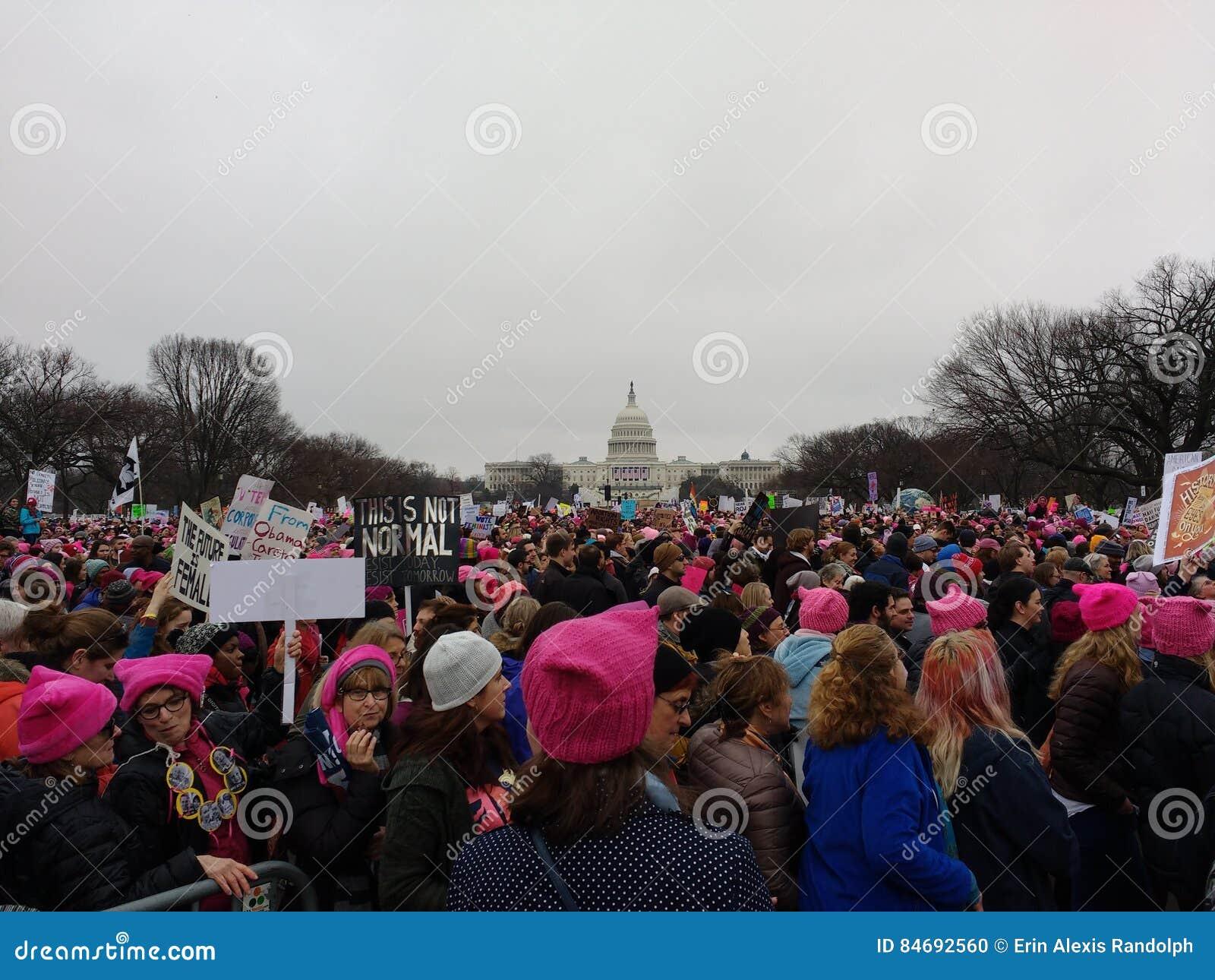 Frauen ` s März auf Washington DC, Protestierender erfasste auf dem nationalen Mall, US-Kapitol im Abstand, USA