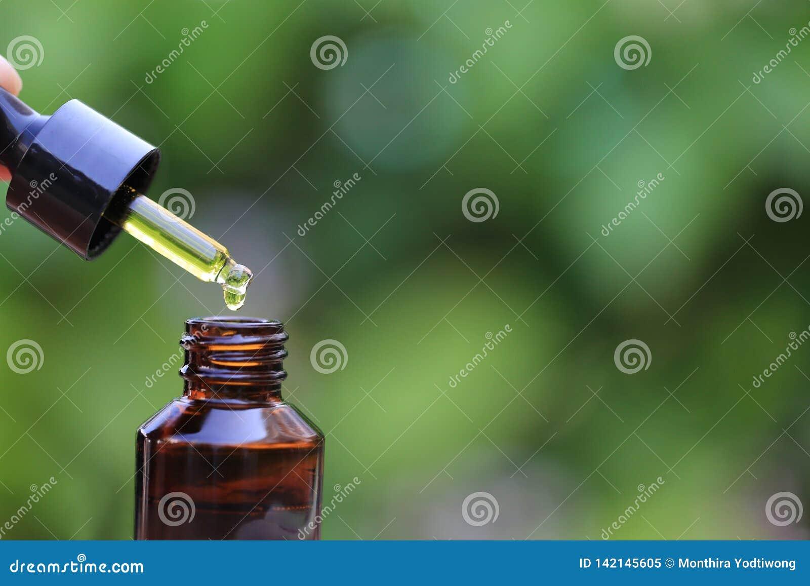 Frauenhand, die ?therisches ?l halten oder Vitamin C, das auf die Flasche auf nat?rlichem gr?nem Hintergrund, kosmetischer Pipett