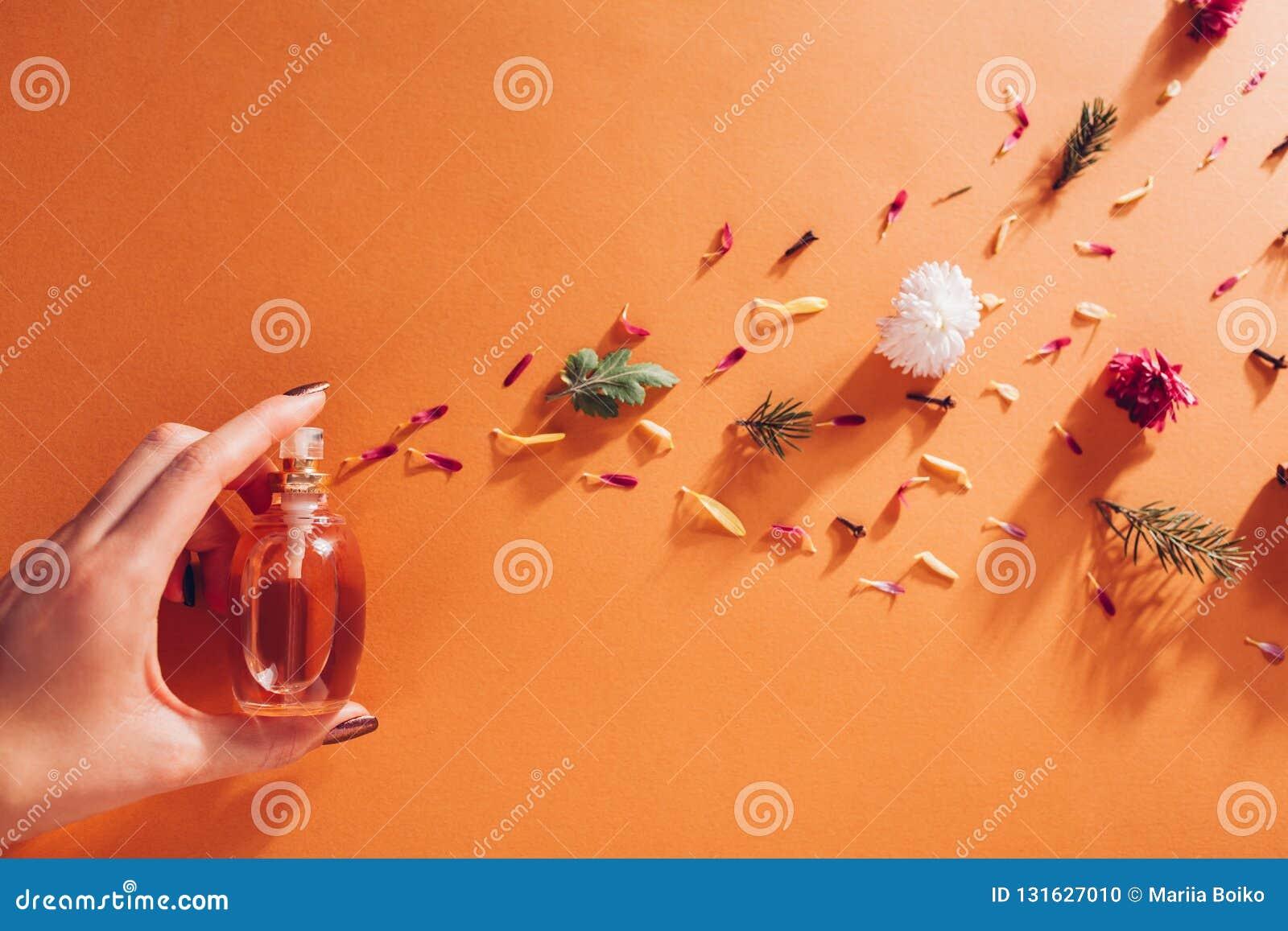 Frauenholdingflasche Parfüm mit Bestandteilen Duft von Blumen, von Gewürzen, von Kräutern und von Tannenbaum auf orange Hintergru