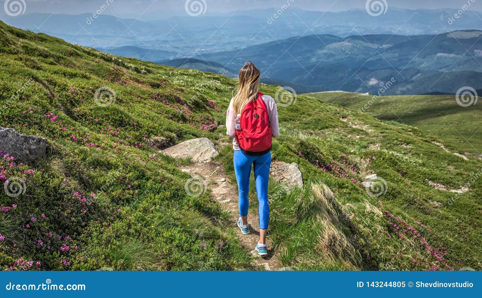 Frauenreisender im Freien mit Rucksackwegen außerhalb der Reise im Gebirgssommer-Wanderungsaufstieg