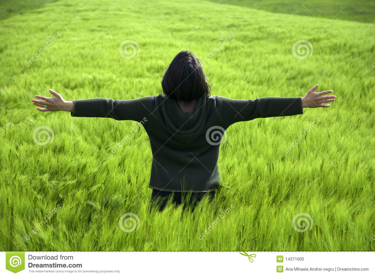 Free and happy young woman in a spring wheat field