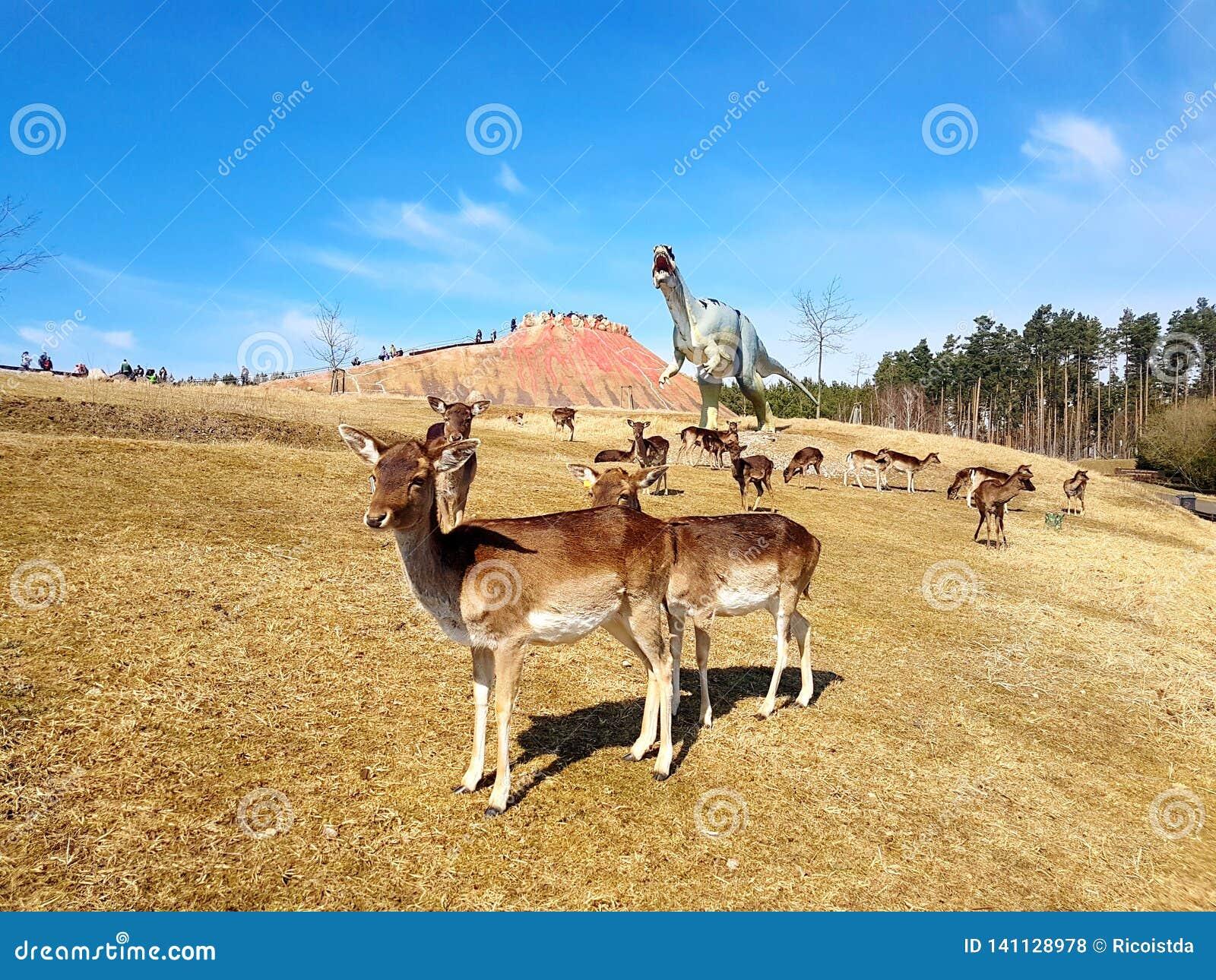Free-roaming deer in dinosaur park with volcano