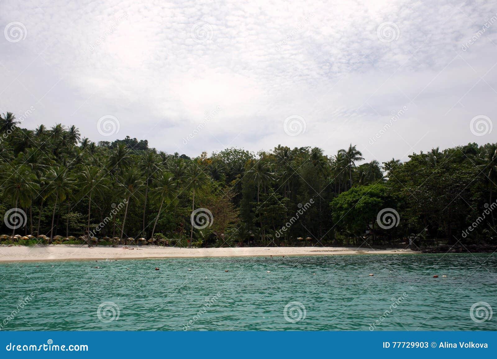 Freedom Beach Phuket Thailand Stock Image Image Of Beauty