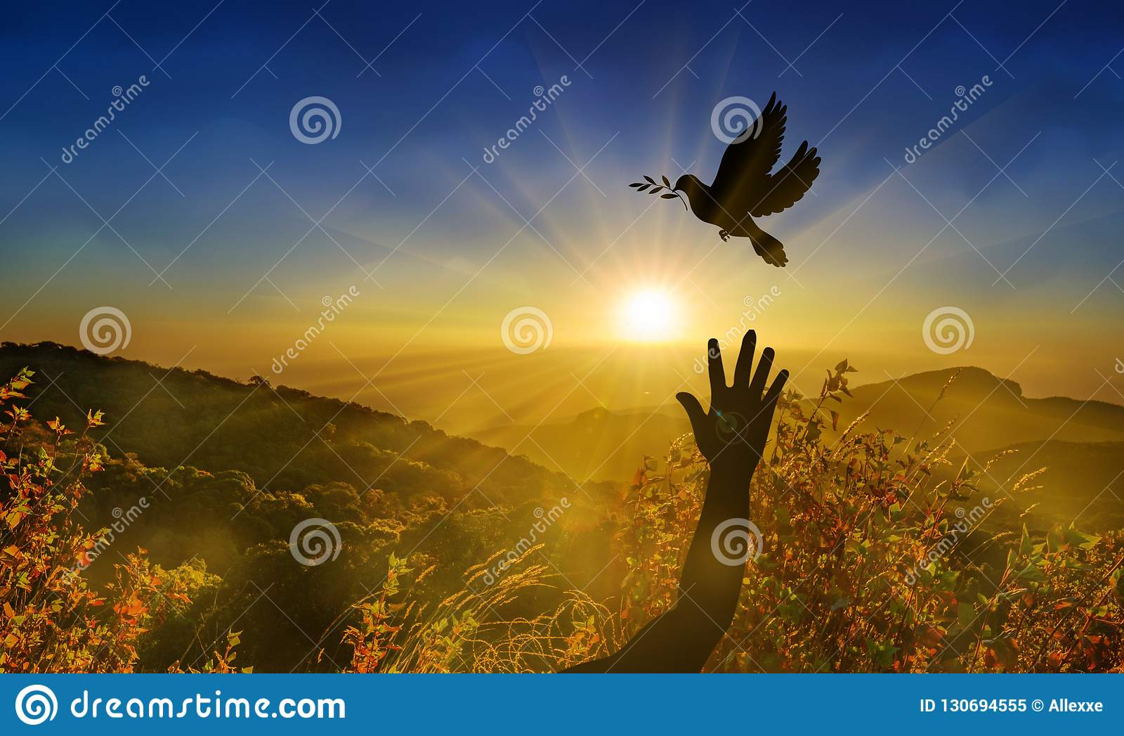 Freedom, peace and spirituality pigeon with olive branch