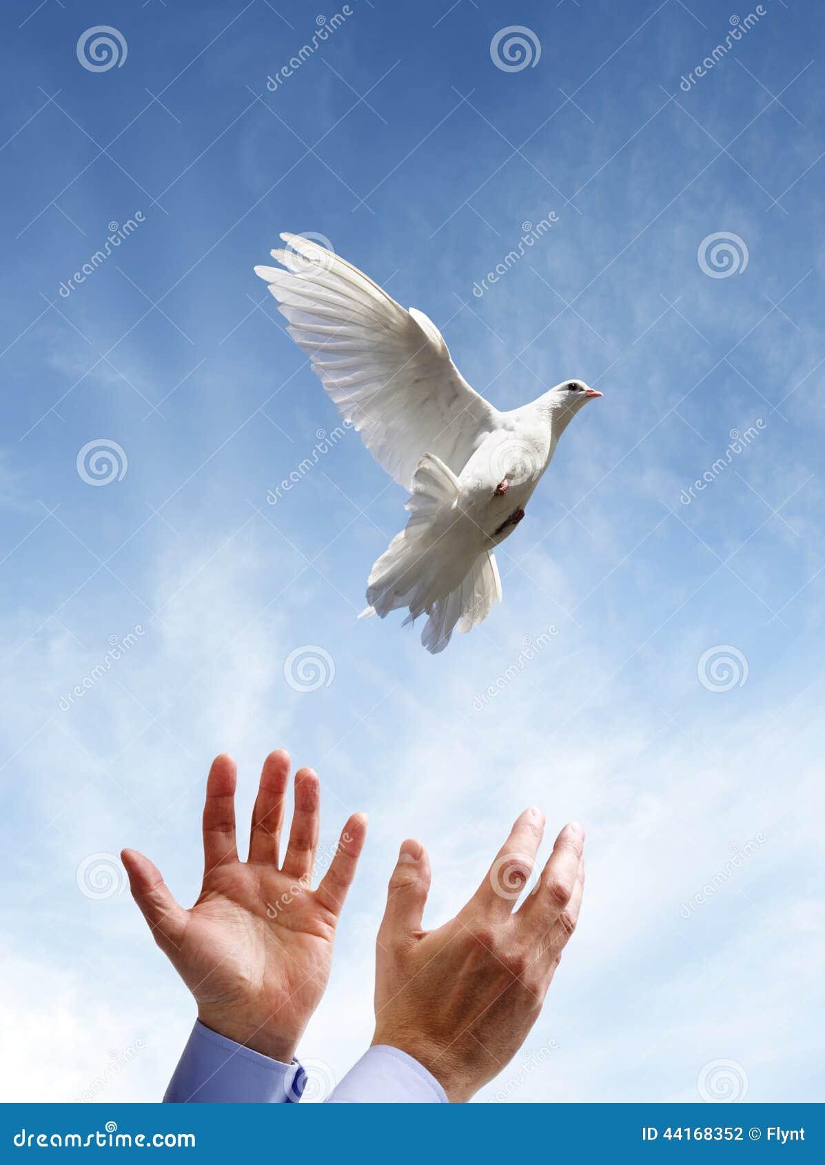 Freedom, peace and spirituality.