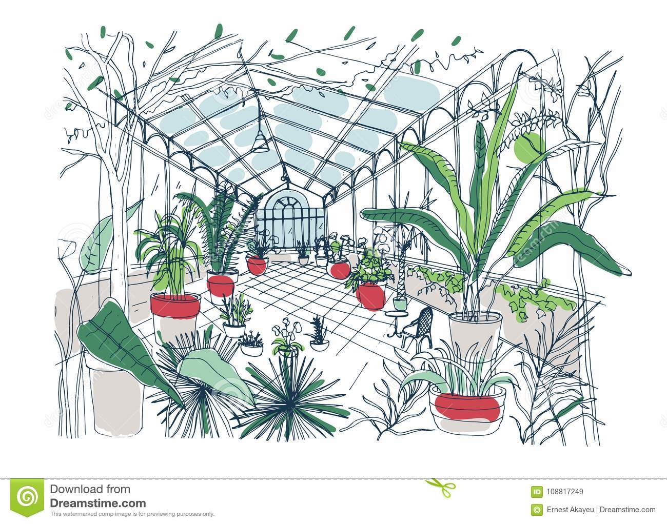 Orangery cartoons illustrations vector stock images for Planta tropical interior