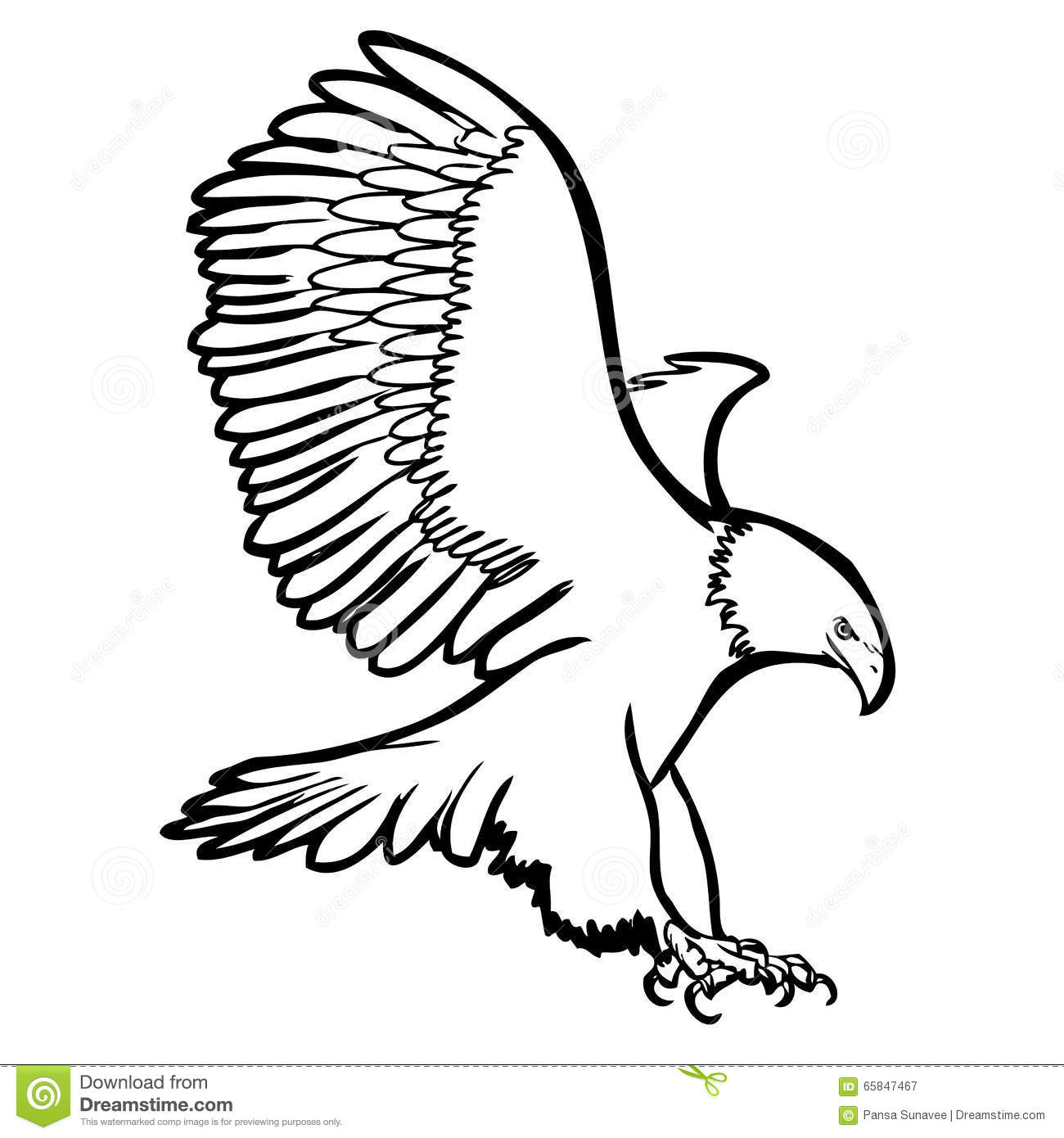 Freehand Sketch Illustration Of Eagle, Hawk Bird Stock