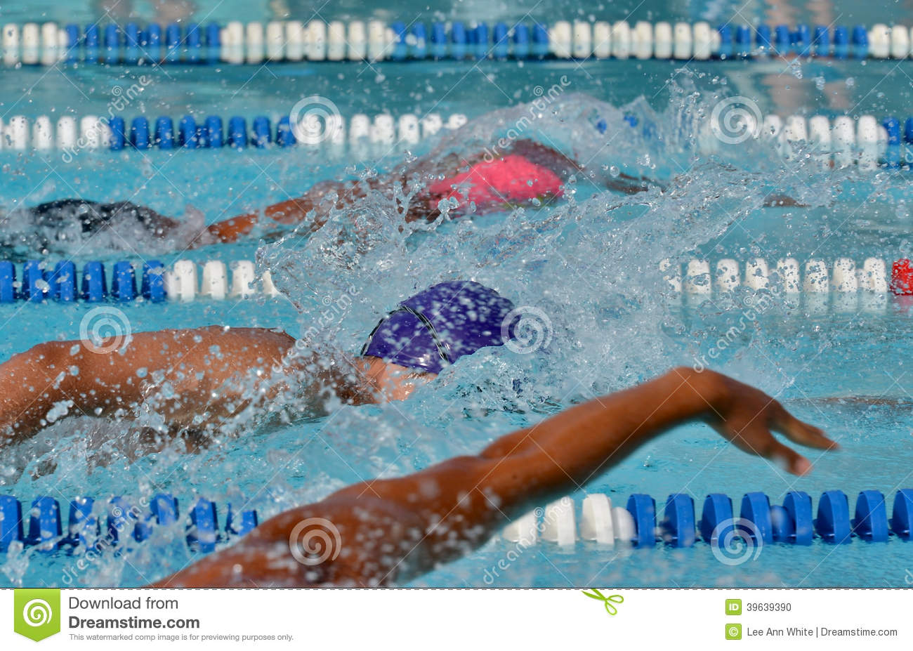 Freestyle swimmers in a close race at a swim meet