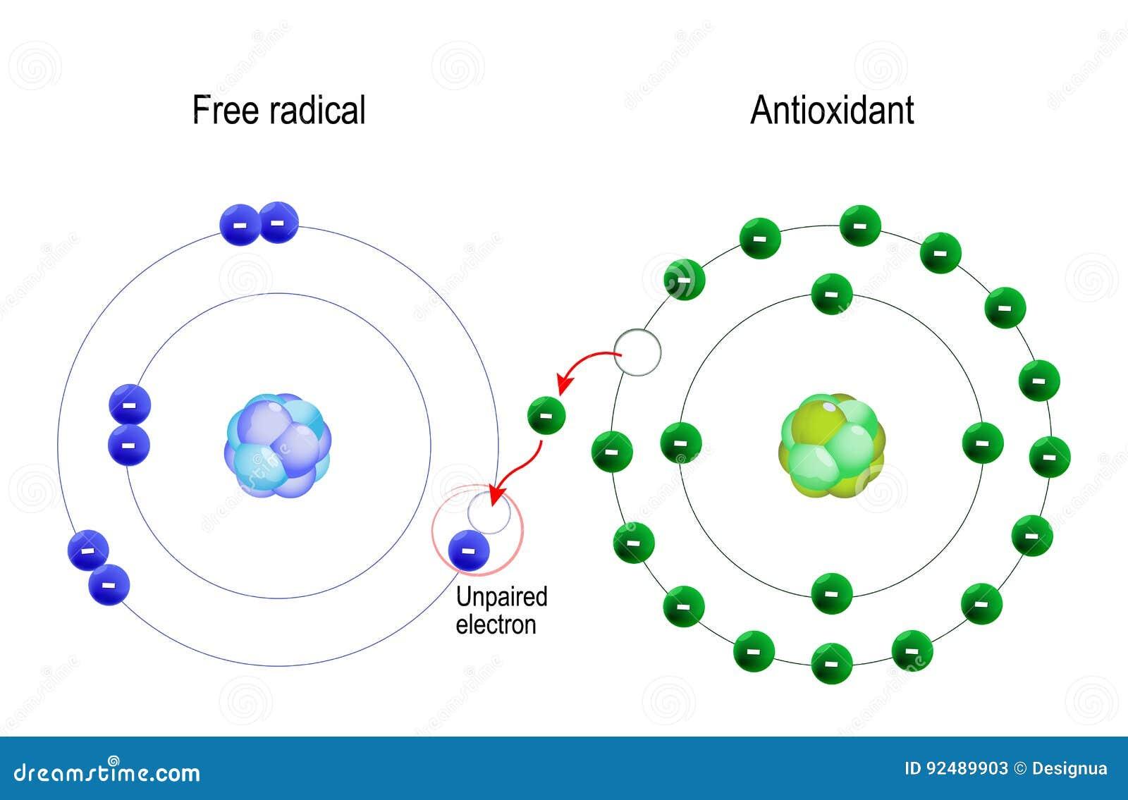 Freies Radikal Und Antioxydant Vektor Abbildung - Illustration von ...