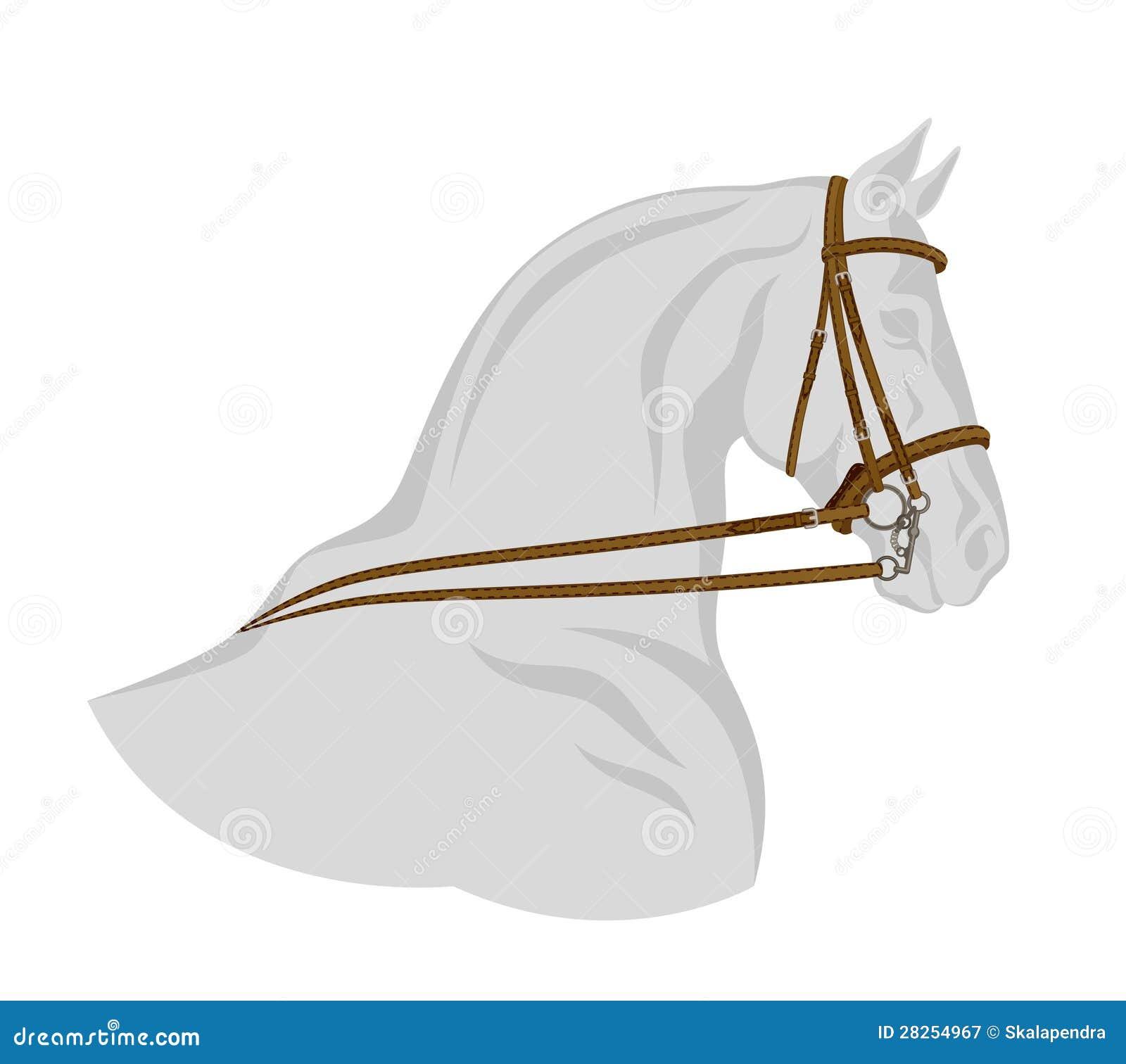 Freio no cavalo
