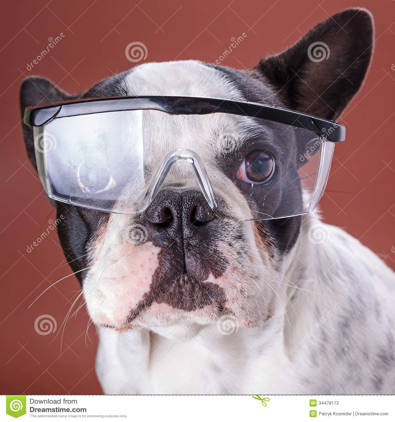 Bulldog Safety Glasses