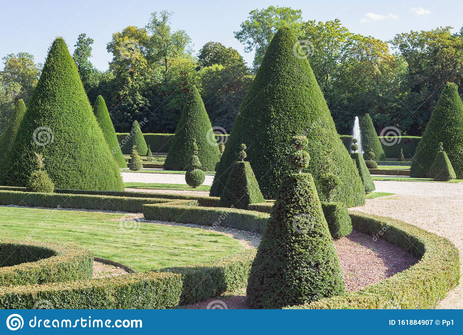 French Chateau Garden Topiary Cut Tree Design Stock Image Image
