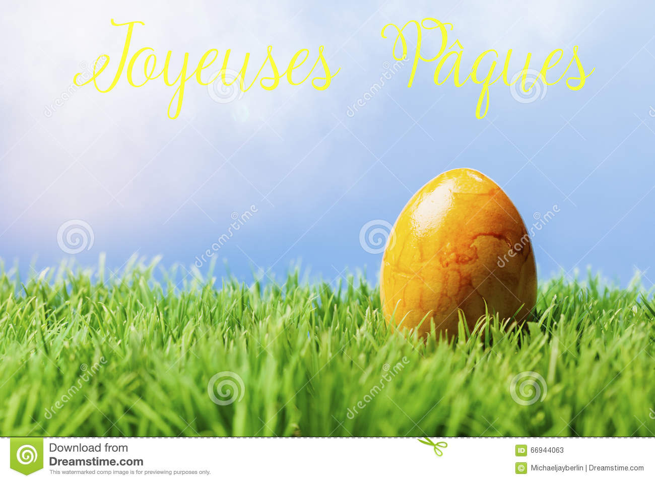 French Easter Greeting Text Yellow Easter Egg In Grass Stock Image