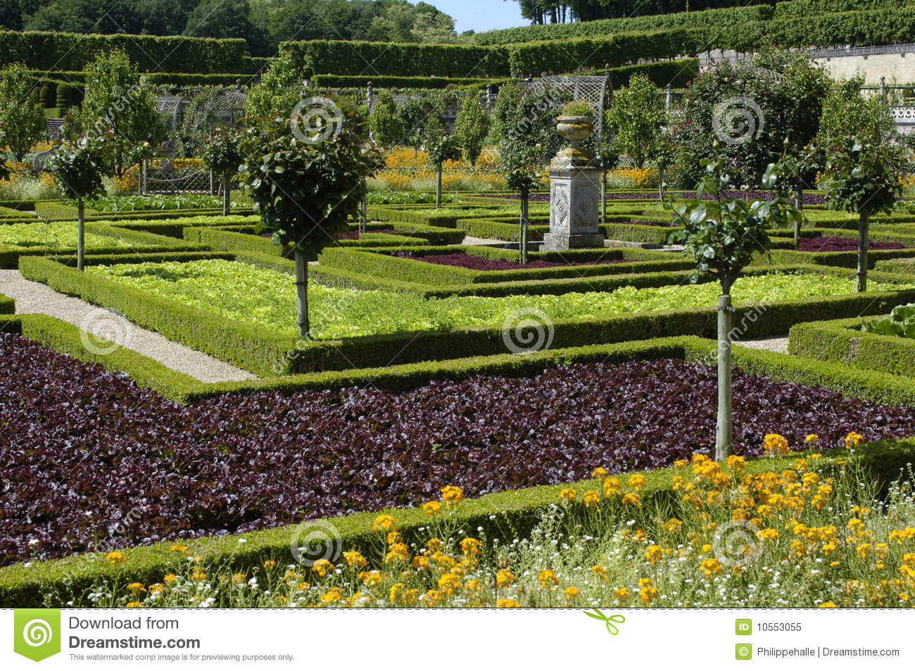 French Formal Garden Royalty Free Stock Photo Image 10553055
