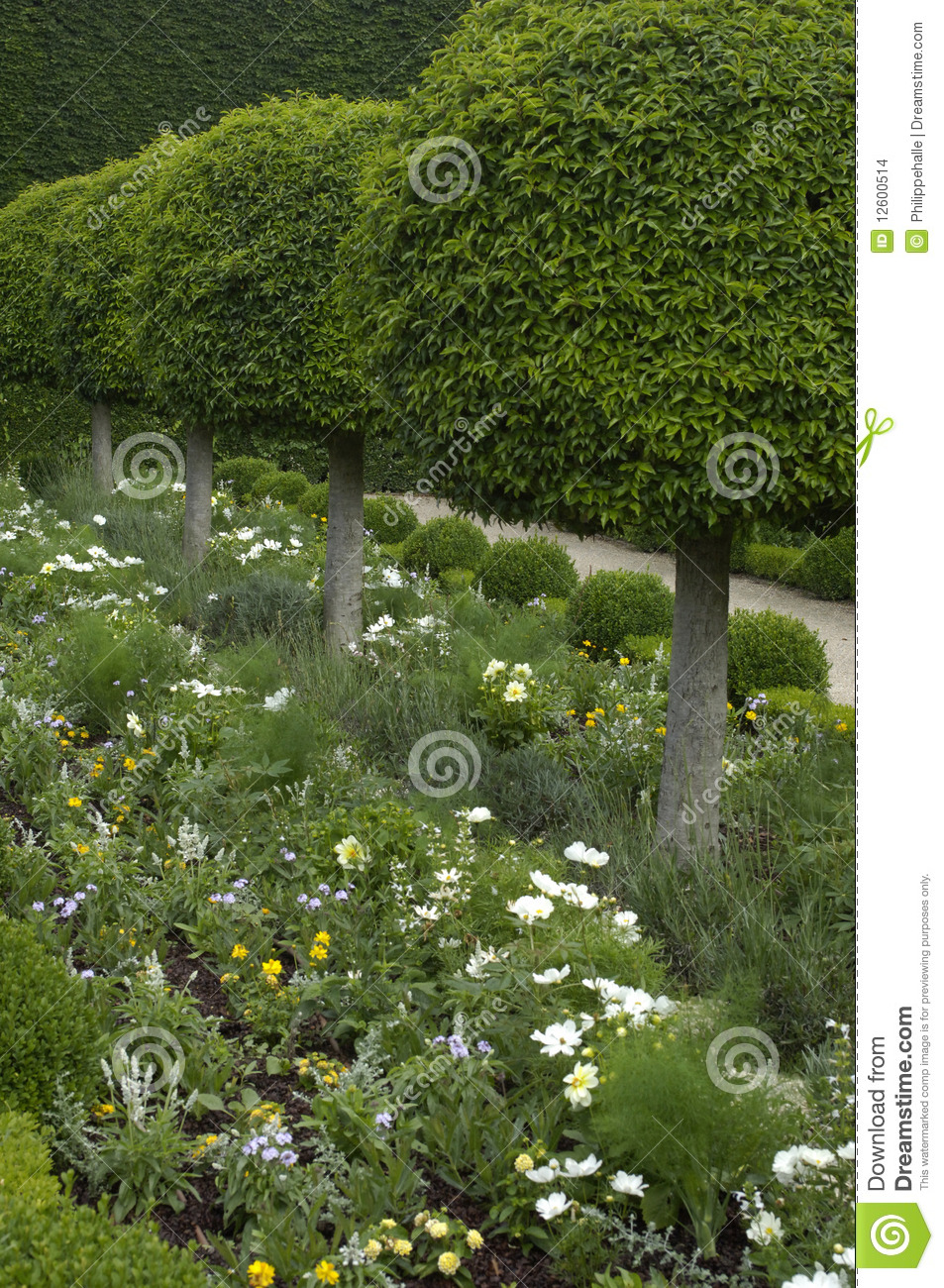 French Formal Garden Stock Images Image 12600514