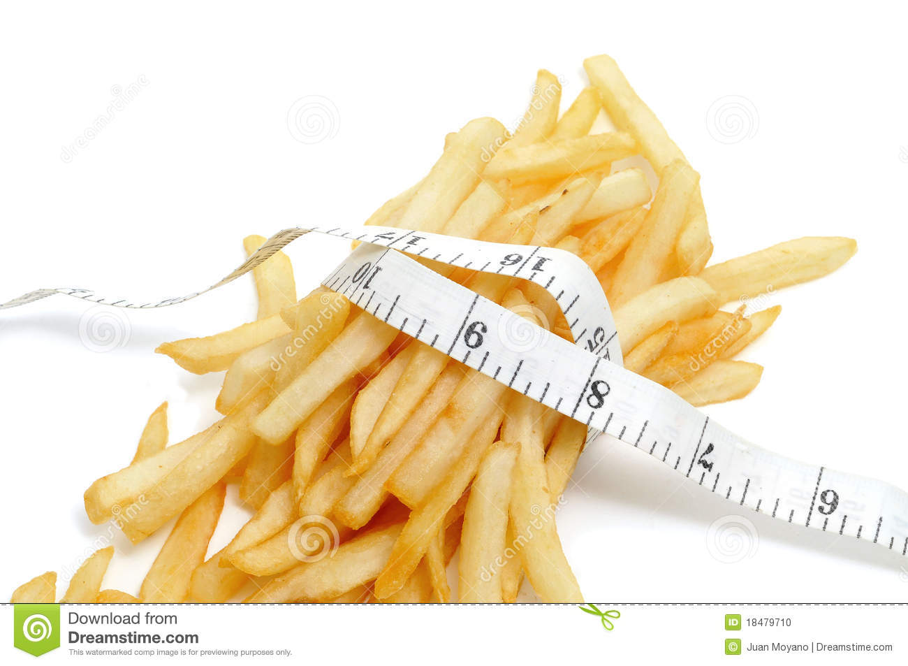 fries business plan
