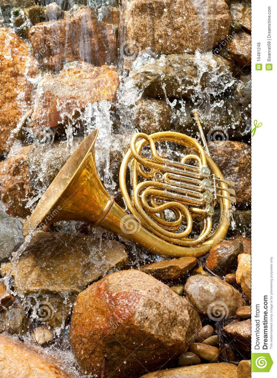 French Horn Instrument stock photo  Image of musical - 10481248