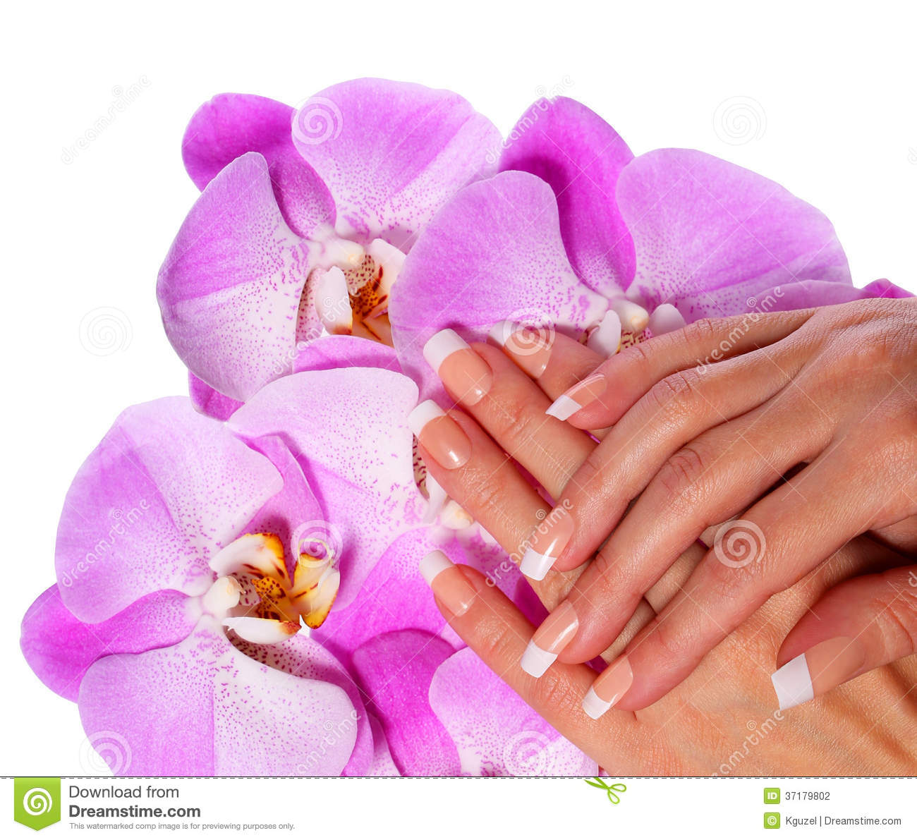 Free Manicure Beauty Hands Makeover: French Manicure. Beautiful Female Hands With Pink Orchid