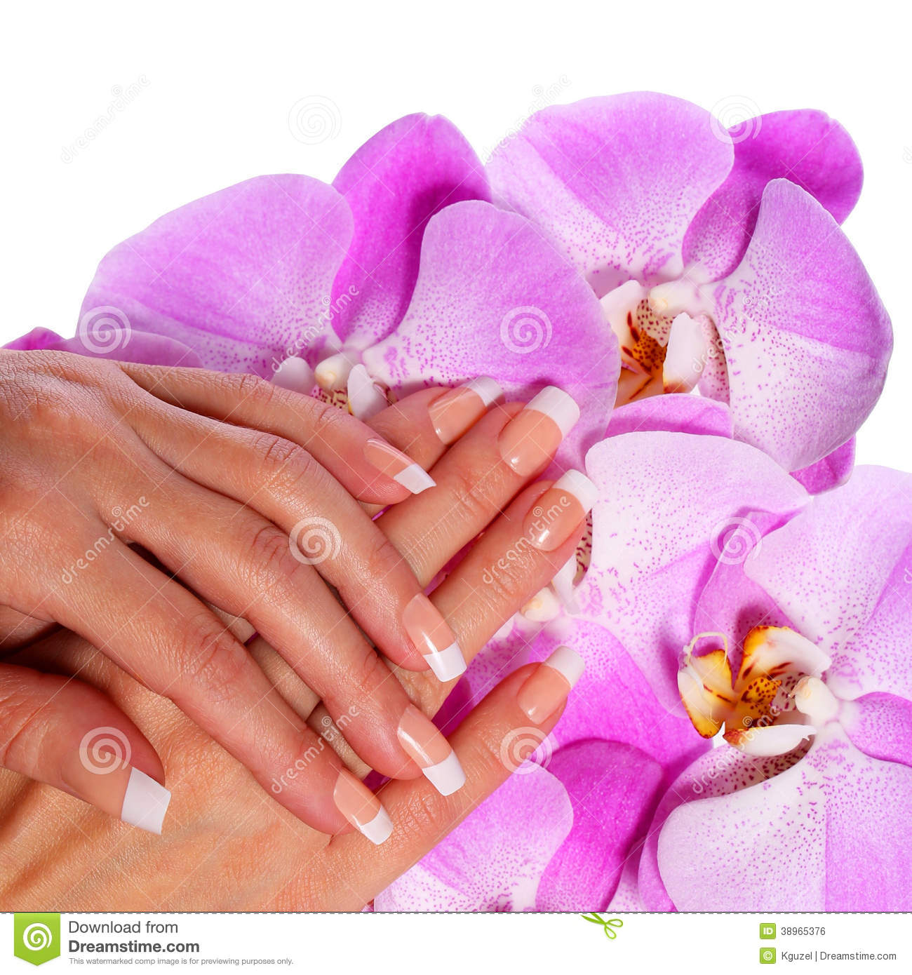 Free Manicure Beauty Hands Makeover: Beautiful Hands With Perfect Nail Pink Manicure Stock