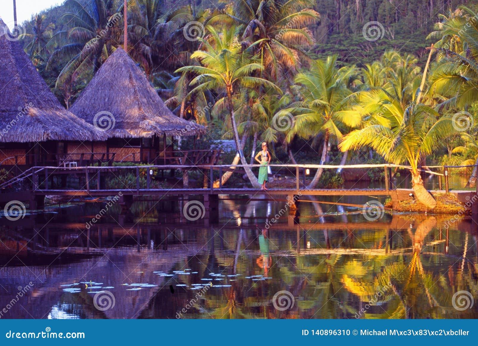 Where Is Bali Hai Island french polynesia: the bali hai resort hotel on moorea island
