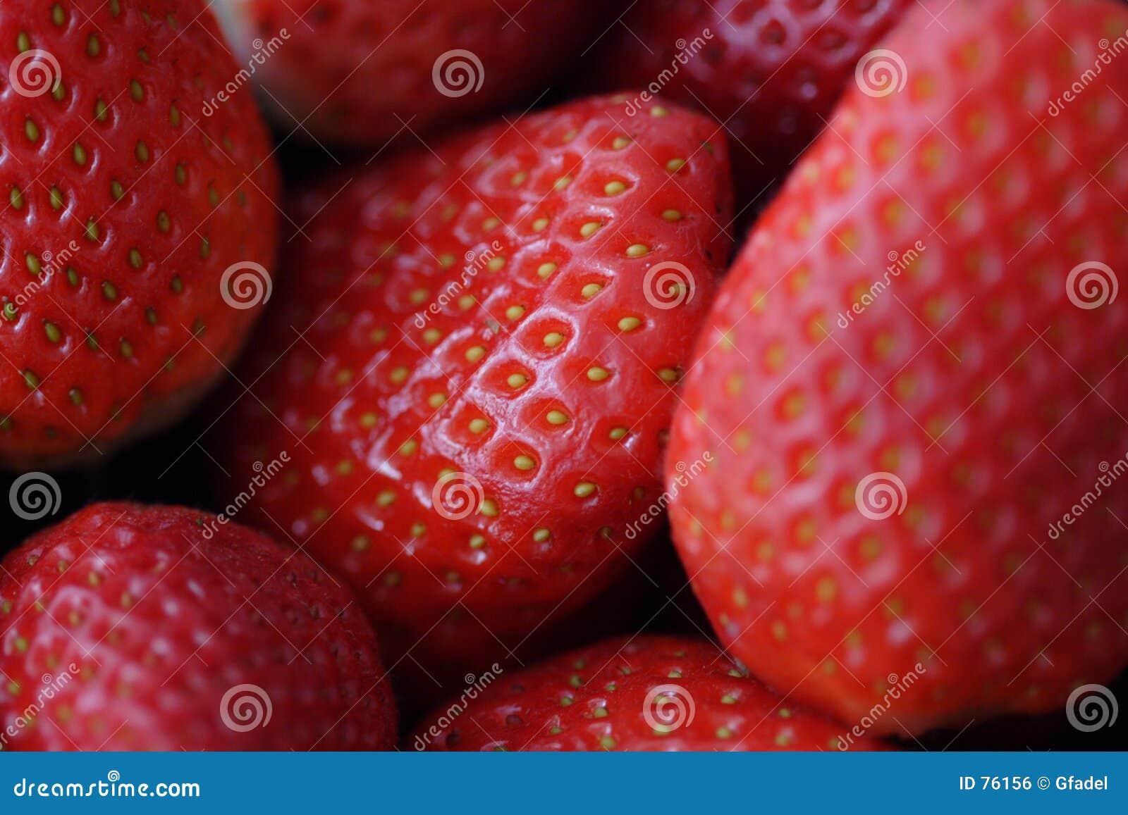Fresas I