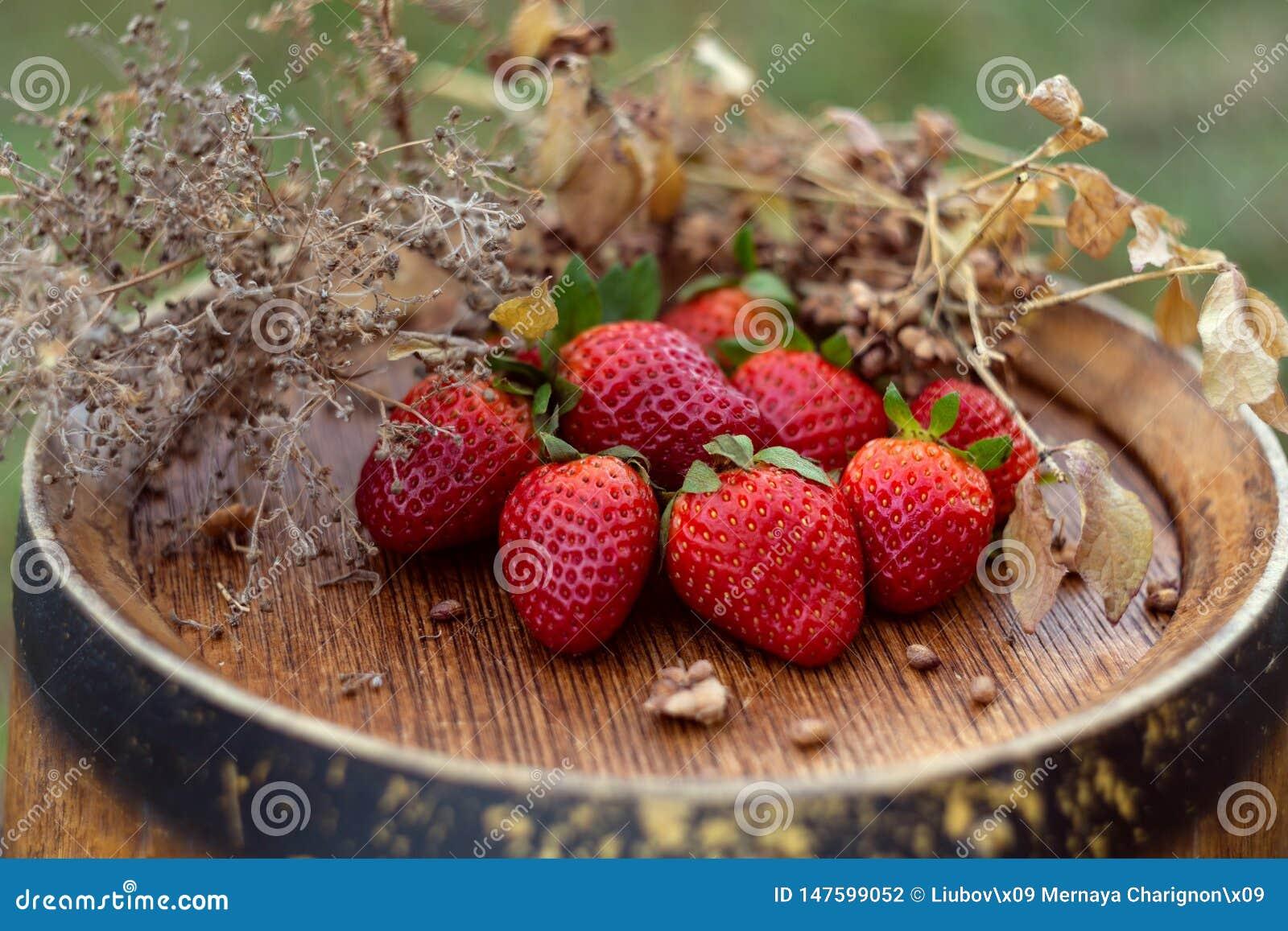 Fresas rojas e hierba seca en un barril de vino en el jardín en primavera Frutas