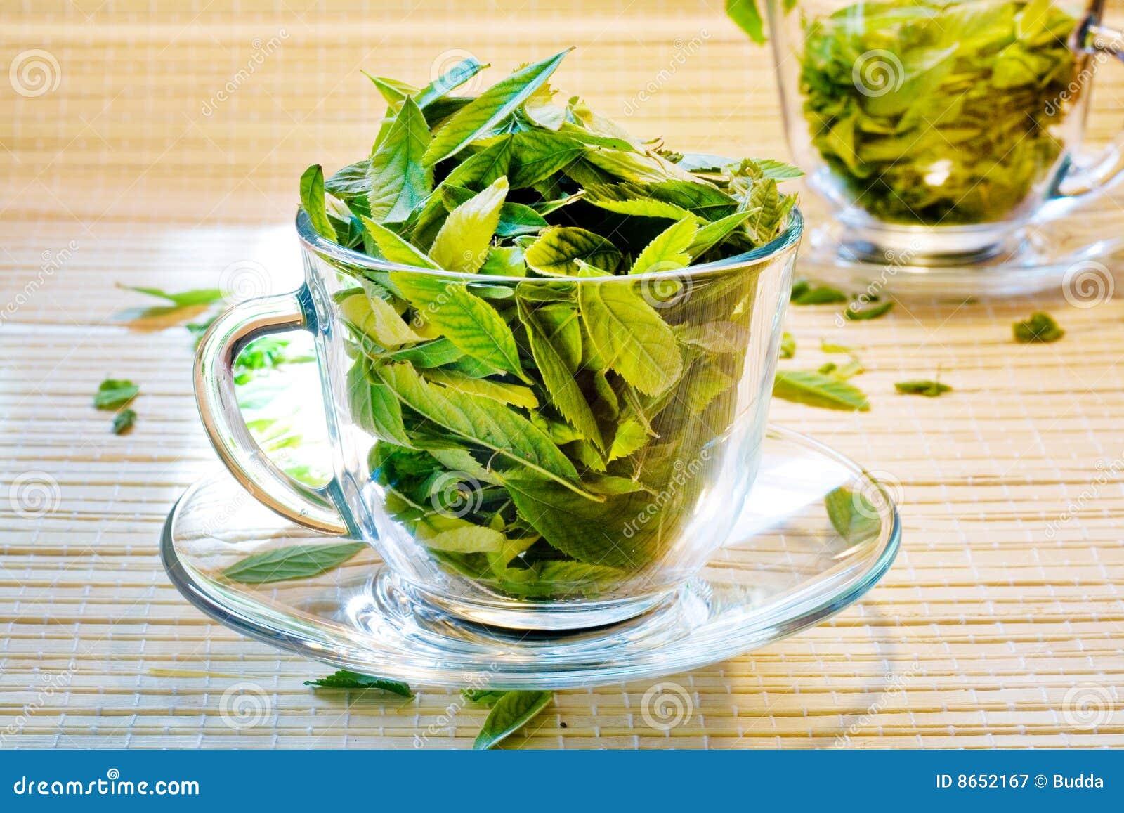 Freschezza del tè verde