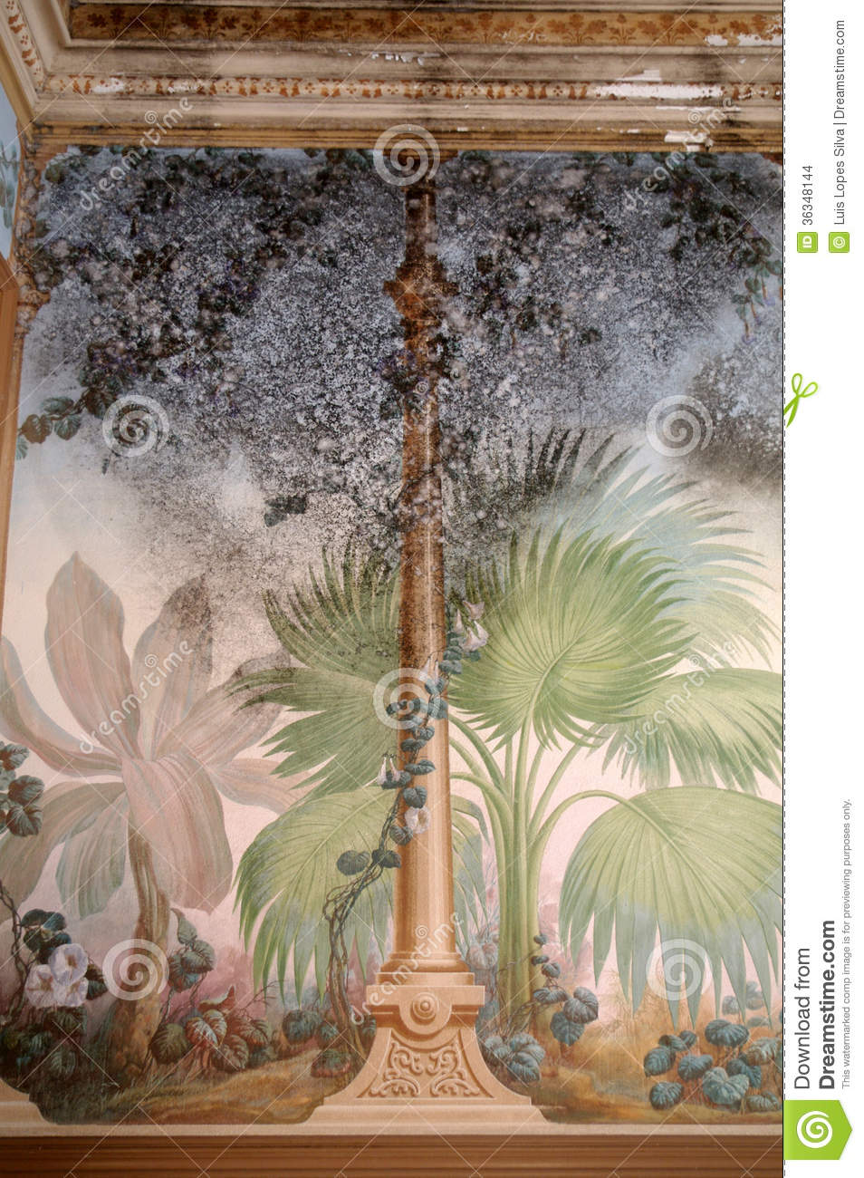 Fresco With Mold Stock Photo Image Of Wall Style Vintage 36348144