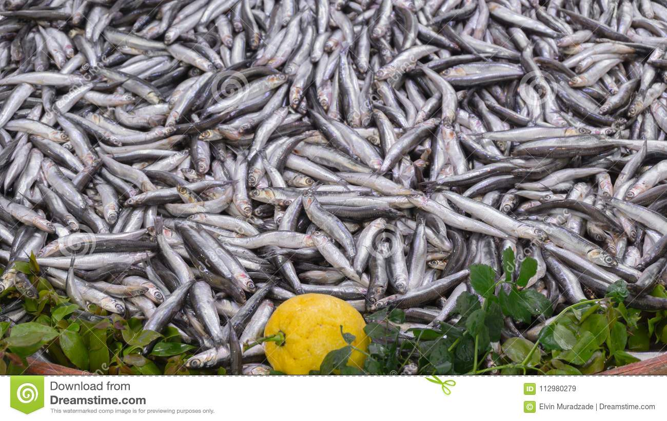 Fresh anchovies on market place