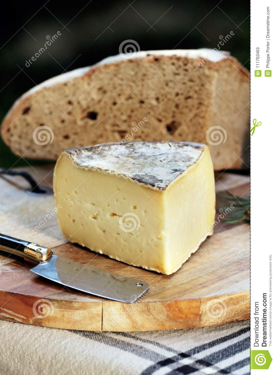 tomme de savoie french cheese savoy french alps france stock image rh dreamstime com