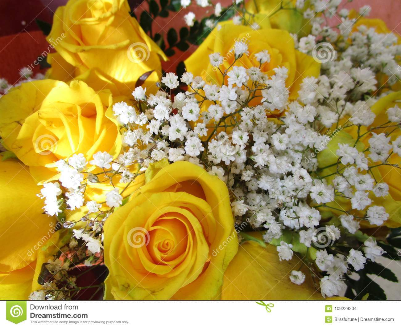 Fresh And Attractive Yellow Colored Roses From The Florist Stock