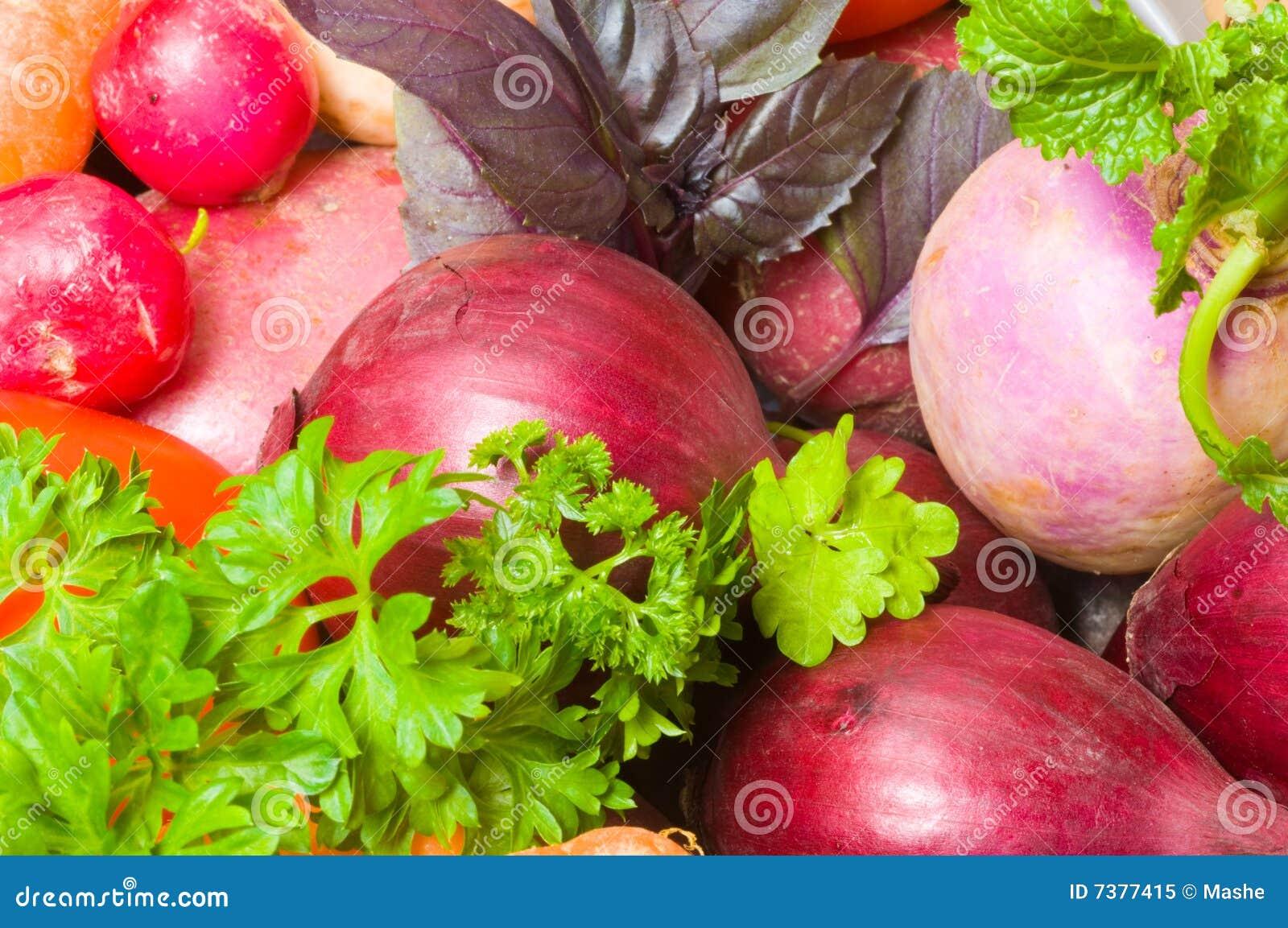 Fresh beautiful vegetables yield royalty free stock photo for Beautiful vegetables