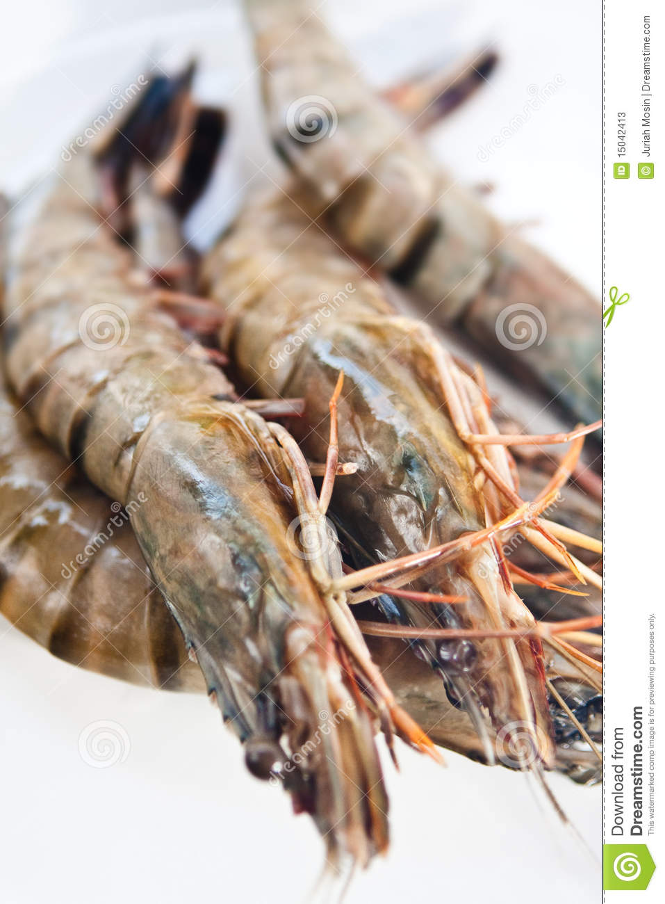 Fresh And Big Raw Tiger Prawn Stock Photos - Image: 15042413